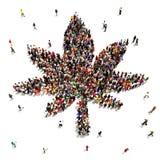 En stor grupp människor som stöttar marijuana Royaltyfri Bild