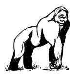 En stor manlig gorilla vektor illustrationer