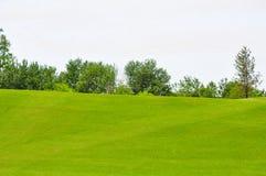 En stor och ren gräsmatta vid himmel arkivbilder