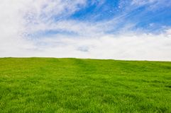 En stor och ren gr?smatta vid himmel royaltyfria foton