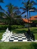En stor schackbräde i en härlig trädgård arkivfoton