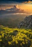 En stor sikt av bergdalen royaltyfri fotografi