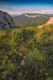 En stor sikt av bergdalen från över royaltyfria bilder