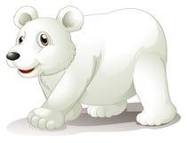 En stor vit björn Arkivbild