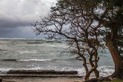 En storm på stranden arkivbild