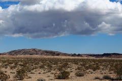 En storm som bryggar i h?gl?nderna f?r Mojave?ken royaltyfri foto