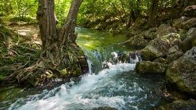 En stormig ström av flodvatten between vaggar och ett träd arkivfilmer