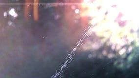 En ström av vatten mot en solnedgångbakgrund lager videofilmer