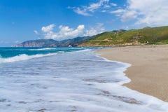 En stranden Royaltyfri Fotografi