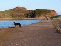 En strandplats i södra västra England royaltyfri bild