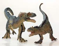 En strid mellan en Carnotaurus och en Allosaurus Arkivbilder