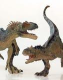 En strid mellan en Carnotaurus och en Allosaurus Fotografering för Bildbyråer
