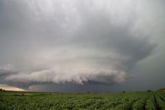 En supercellåskväder hägrar över bönafält i Iowa Arkivbilder