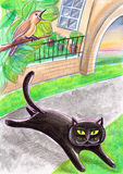 En svarta tillfälliga Cat And en fågel Arkivbild