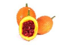 En sydostlig asiatisk frukt, vet gemensamt som Gac royaltyfri fotografi