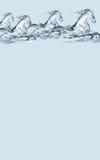 En-tête de chevaux de l'eau Image stock