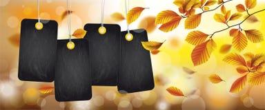 En-tête de feuillage d'Autumn Black Price Stickers Beech Photos libres de droits