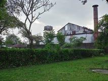 En tefabrik i en teträdgård som lokaliseras i Dooars, västra bengal, Indien royaltyfri fotografi