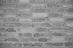 En tegelstenvägg Fotografering för Bildbyråer