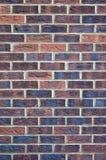En textur/en bakgrund för vägg för fast tegelsten Royaltyfri Fotografi
