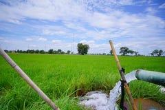 En Thaïlande, les agriculteurs pompent l'eau dans les champs Image stock