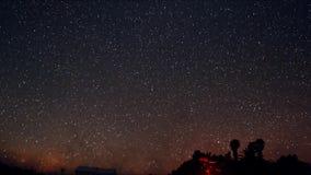 En tidschackningsperiod av en stjärnklar natt med en skugga av ett träd i förgrund och med en stjärnaslingaeffekt stock video