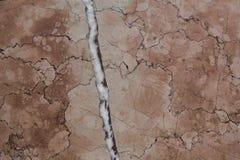 En tjock skiva av marmorerar tjock skiva med ljus vit glimmer och många åder royaltyfri foto