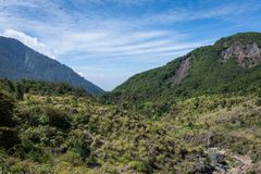 En tjock skog p? monteringen Papandayan med klar bl? himmel Det Papandayan berget ?r ett av det favorit- st?llet som fotvandrar p arkivbilder