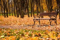 En tom bänk äger rum i en höst parkerar Royaltyfri Foto