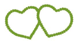 En tom ram för hjärtaform av växt av släkten Trifolium för fyra Leaf Royaltyfri Foto