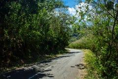 En tom väg i en solig dag med ingen lämnad Precis träd, buske och moln arkivbild