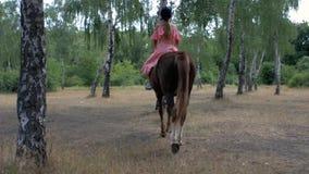 En tonårs- flicka i en skyddande hjälm och en rosa klänning rider en brun häst i en björkdunge tillbaka sikt 4K video 4K lager videofilmer