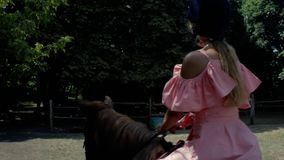 En tonårs- flicka i en skyddande hjälm och en rosa klänning rider en brun häst på en bakgrund av träd Slapp fokus 4K video 4K lager videofilmer