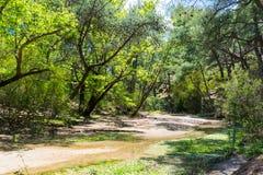 En torr flodbädd i bergen arkivfoton