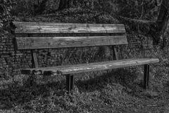 En träbänk på solig dag i Italien, offentlig parkland Arkivbilder