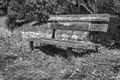 En träbänk på solig dag i Italien, offentlig parkland Royaltyfri Foto