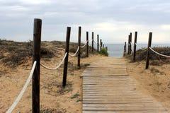 En träbana på stranden till havet Arkivbild