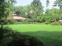 En trädgård i den Dehiwala zoo Arkivfoto