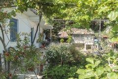 En trädgård i Poros Elios Proni, Cephalonia Arkivfoton
