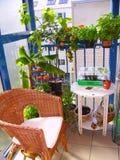En trädgård på balkong Royaltyfri Bild
