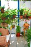 En trädgård på balkong Arkivbilder