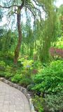 En trädgårds- bana. Arkivfoto
