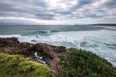 En trädpunkt, Australien arkivfoton