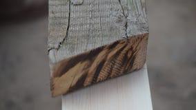 En trämall är den van vid fläcken per trästråle med en blyertspenna lager videofilmer