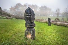 En trästaty av Viking Royaltyfria Bilder