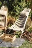 En trästol i ett skoghus, en ask med champinjoner, bär Ferier i bergen, livsstil royaltyfri fotografi