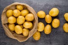 En trätappningbakgrund för bio rödbrun potatis Royaltyfri Foto