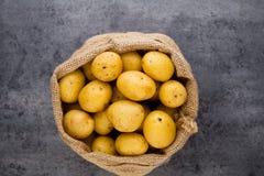 En trätappningbakgrund för bio rödbrun potatis Arkivbild