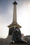 En Trafalgar fyrkant Europa Arkivfoto