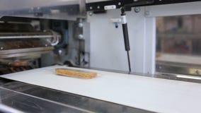 En transportador los pedazos de pan embalaron en el empaquetado transparente almacen de metraje de vídeo